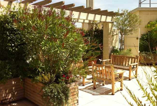 paysagiste paris 10 am nagement terrasse bac fleurs paris 2. Black Bedroom Furniture Sets. Home Design Ideas
