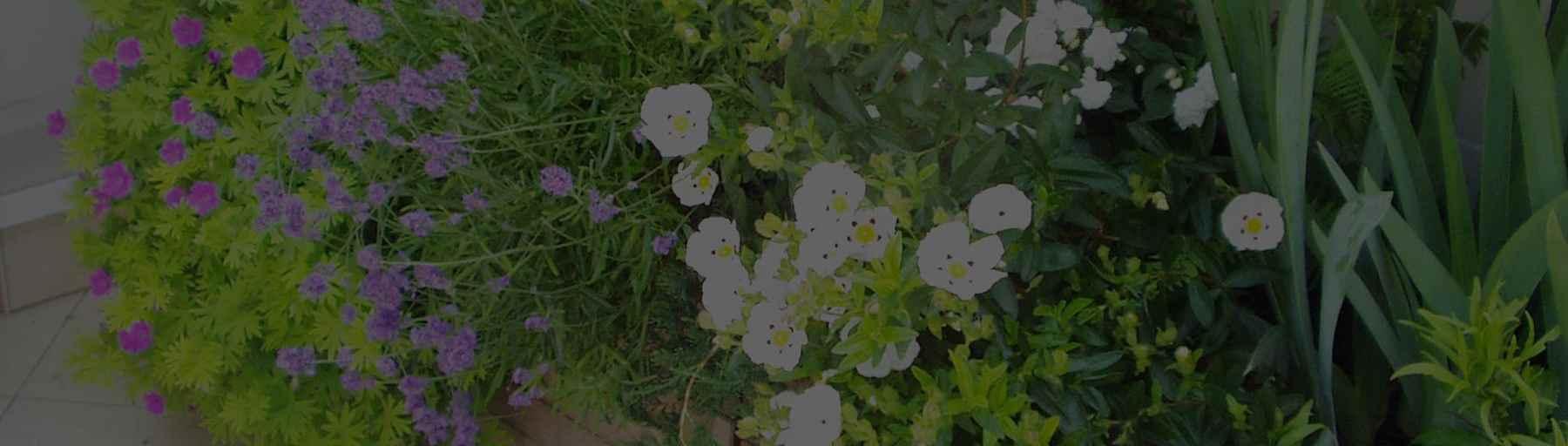 Paysagiste jardiniere paris 10 creation jardin for Paysagiste boulogne billancourt