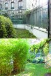 Un jardin aux Buttes Chaumont